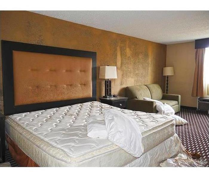 A hotel room with a bed that has mold forming on the headboard and on the walls. Sheets ripped off bed, pillows scattered.