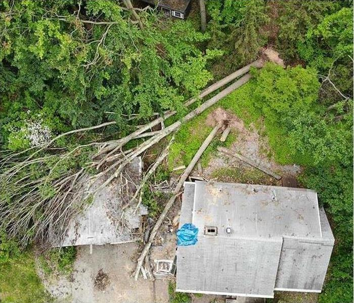 A birds-eye-view of trees that have fallen onto a building.