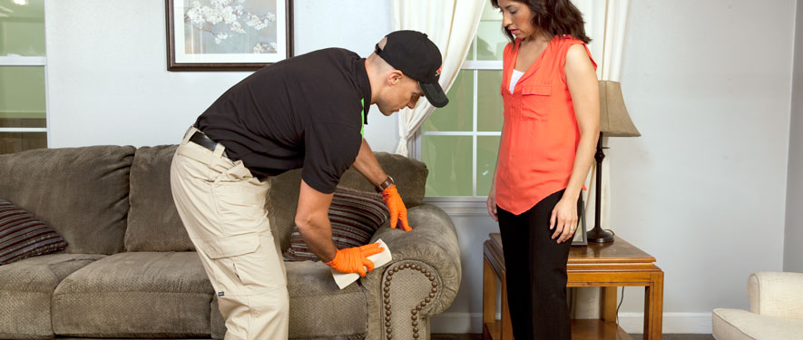 West Hartford, CT carpet upholstery cleaning